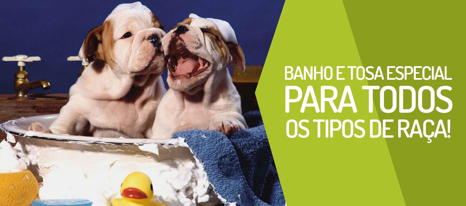 Banho & Tosa especial para todos os tipos de raças